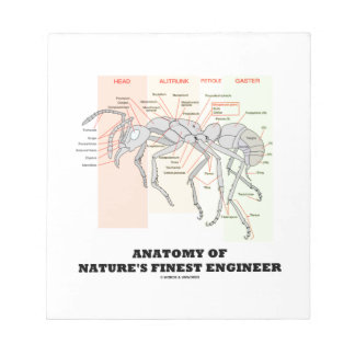 Anatomy Of Nature's Finest Engineer (Worker Ant) Notepad