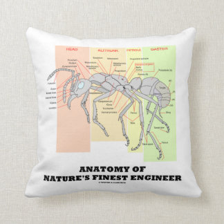 Anatomy Of Nature's Finest Engineer (Worker Ant) Throw Pillow