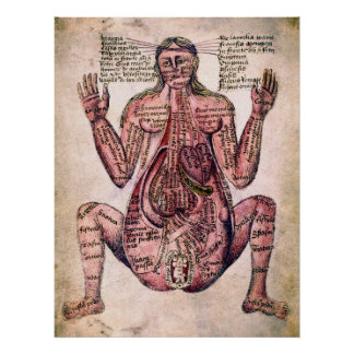 ANATOMY of PREGNANT WOMAN c. 14 century Poster