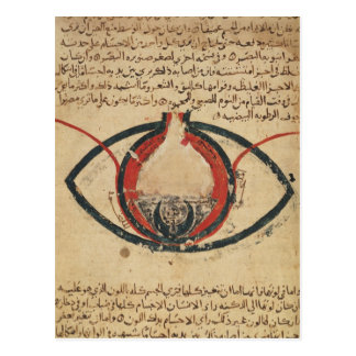 Anatomy of the Eye, from a book on eye diseases Postcard