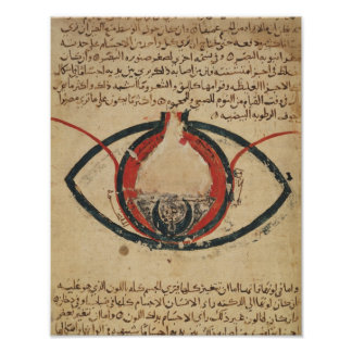 Anatomy of the Eye, from a book on eye diseases Poster