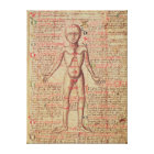 Anatomy of the human body canvas print