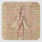 Anatomy of the human body square sticker