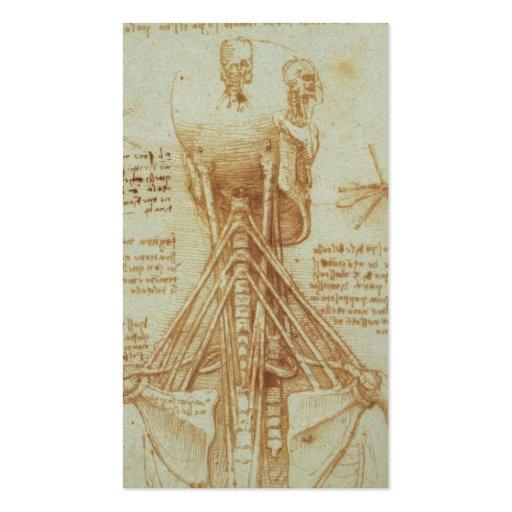 Anatomy of the Neck by Leonardo Da Vinci c. 1515 Business Card