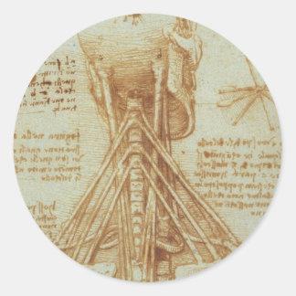 Anatomy of the neck classic round sticker