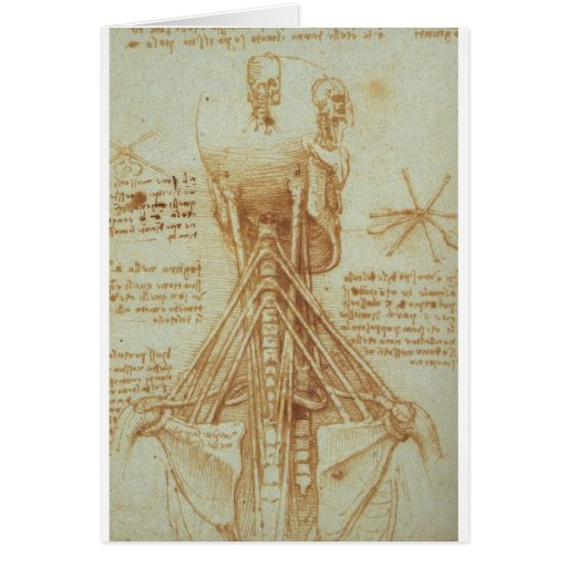 Anatomy of the neck greeting card
