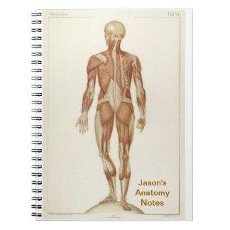 Anatomy Posterior Spiral Notebook