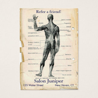 Anatomy Posterior Vintage Drawing Business Card