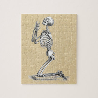 Anatomy Skeleton Illustration Jigsaw Puzzle