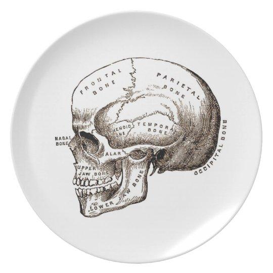 anatomy Skull Dinner Plate