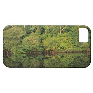 Anavilhanas, Amazonas, Brazil. Rainforest river iPhone 5 Case