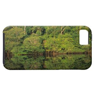 Anavilhanas, Amazonas, Brazil. Rainforest river iPhone SE/5/5s Case