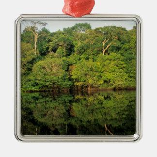 Anavilhanas, Amazonas, Brazil. Rainforest river Metal Ornament