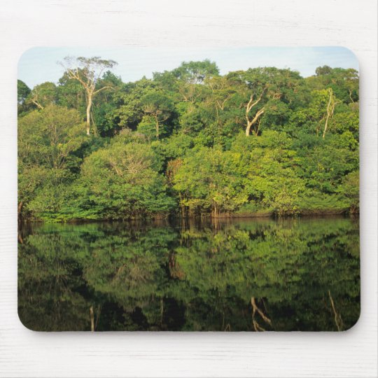 Anavilhanas, Amazonas, Brazil. Rainforest river Mouse Pad