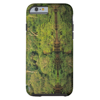 Anavilhanas, Amazonas, Brazil. Rainforest river Tough iPhone 6 Case