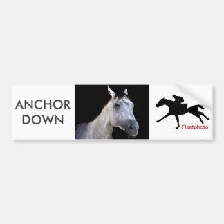 Anchor Down at Saratoga Bumper Sticker