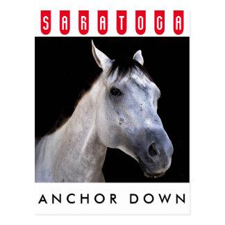Anchor Down at Saratoga Postcard