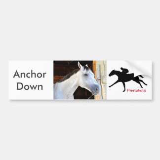 Anchor Down Bumper Sticker