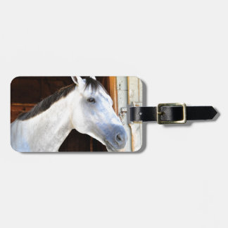Anchor Down by Tapit Bag Tag