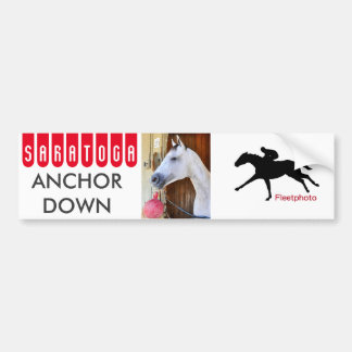 Anchor Down -Pletcher Bumper Sticker