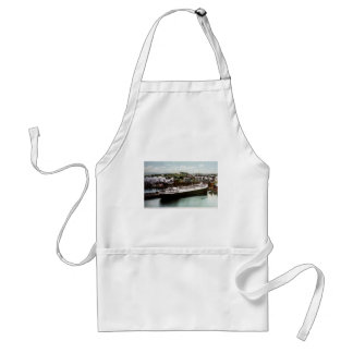 Anchor Line Dock, Marquette, Michigan 1908 Adult Apron