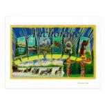 Anchorage, Alaska - Large Letter Scenes Post Card