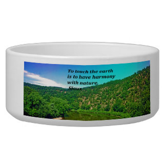 Ancient Americna Indian Proverb Bowl