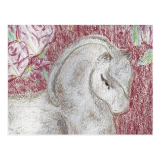 Ancient Asian Pony Postcard