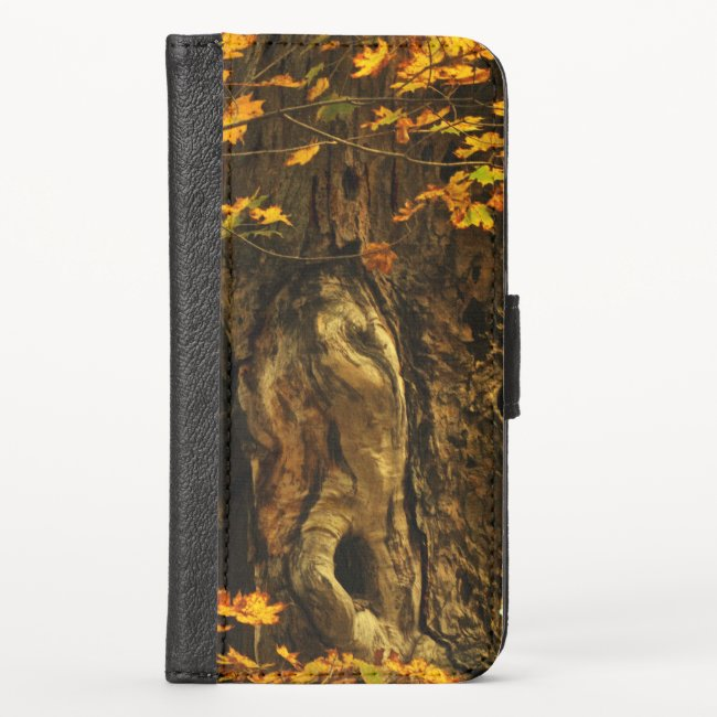 Ancient Autumn Tree iPhone X Wallet Case