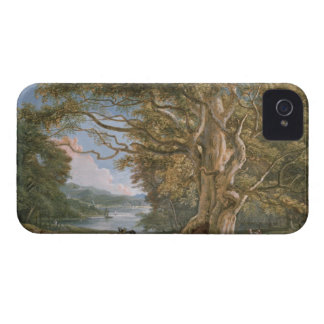Ancient Beech Tree Case-Mate iPhone 4 Cases