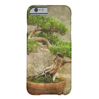 Ancient Bonsai Tree Barely There iPhone 6 Case