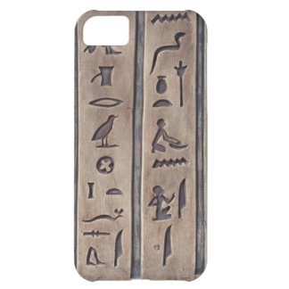 Ancient Carvings Case For iPhone 5C