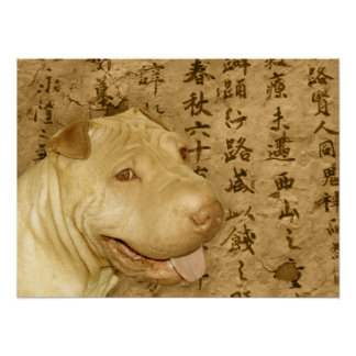 Ancient Chinese Shar Pei Puppy Dog Poster