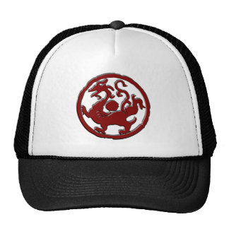 Ancient Chinese symbol : Dragon Trucker Hat