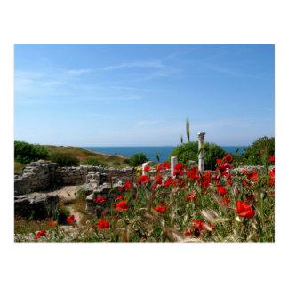 Ancient City Chersonesus Post Card