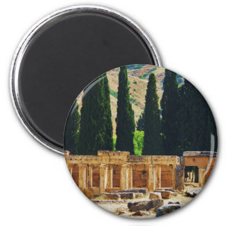 Ancient columns  Hierapolis, Turkey Magnet