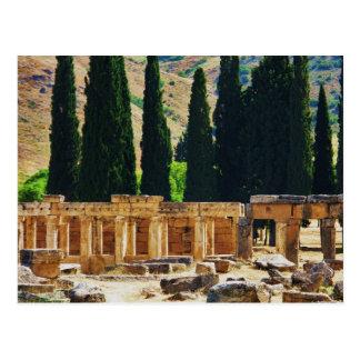 Ancient columns  Hierapolis, Turkey Postcard