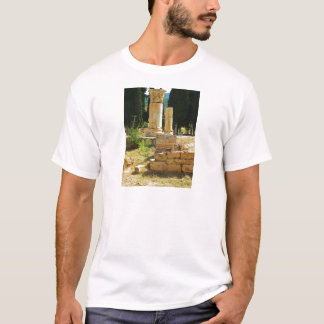Ancient columns in Pamukkale, Hierapolis, Turkey T-Shirt