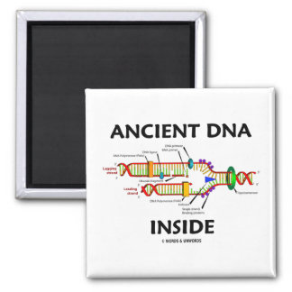 Ancient DNA Inside (DNA Replication Humor) Magnet