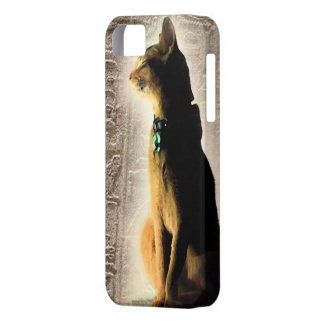 Ancient Dreams iPhone 5 Case