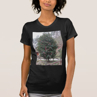 Ancient japanese cultivar of Camellia japonica T-Shirt