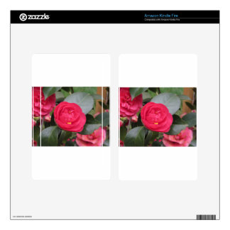 Ancient japanese cultivar of red Camellia japonica Skin For Kindle Fire