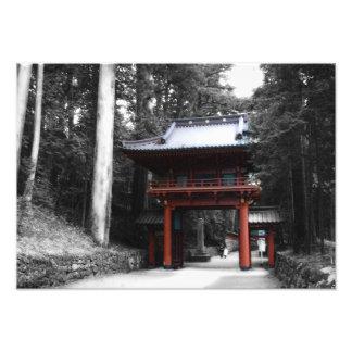 Ancient Japanese Gate Photo
