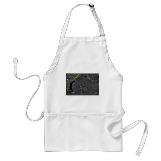 Ancient Nature.JPG Adult Apron