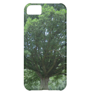 Ancient Oak Tree at Sycharth Castle, Powys iPhone 5C Cover