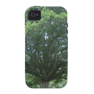 Ancient Oak Tree at Sycharth Castle, Powys Case-Mate iPhone 4 Case