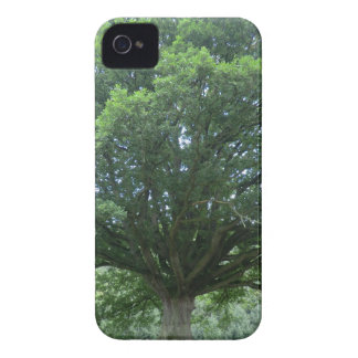 Ancient Oak Tree at Sycharth Castle, Powys iPhone 4 Cover