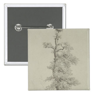 Ancient Oak Tree with a Stork's Nest 2 Inch Square Button
