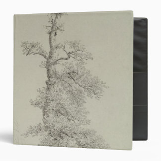 Ancient Oak Tree with a Stork's Nest 3 Ring Binder