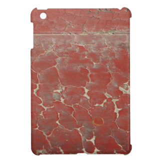 Ancient Paint Case For The iPad Mini